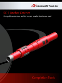SC-1 Anchor Catcher